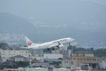 どんちんさんが、伊丹空港で撮影した日本航空 737-846の航空フォト(写真)