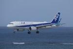 akinarin1989さんが、那覇空港で撮影した全日空 A320-271Nの航空フォト(写真)