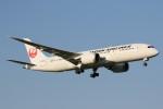 ドラパチさんが、成田国際空港で撮影した日本航空 787-8 Dreamlinerの航空フォト(写真)
