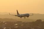 mukku@RJFKさんが、宮崎空港で撮影した全日空 737-881の航空フォト(写真)