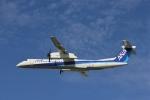 だいまる。さんが、伊丹空港で撮影したANAウイングス DHC-8-402Q Dash 8の航空フォト(写真)