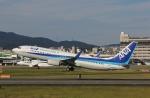 だいまる。さんが、伊丹空港で撮影した全日空 737-881の航空フォト(飛行機 写真・画像)