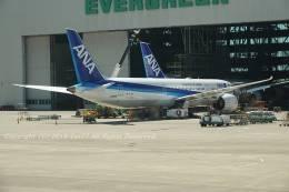 tet77さんが、台湾桃園国際空港で撮影した全日空 787-9の航空フォト(飛行機 写真・画像)