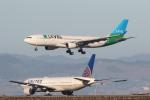 安芸あすかさんが、サンフランシスコ国際空港で撮影したレベル A330-202の航空フォト(写真)