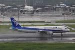 Hiro-hiroさんが、羽田空港で撮影した全日空 A320-211の航空フォト(写真)