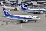 Gambardierさんが、中部国際空港で撮影したエアーネクスト 737-5L9の航空フォト(写真)