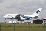 kuro2059さんが、クアラルンプール国際空港で撮影したマレーシア航空 A380-841の航空フォト(写真)
