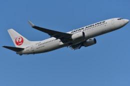南国の防人さんが、成田国際空港で撮影した日本航空 737-846の航空フォト(写真)