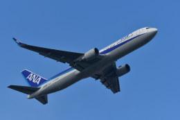 南国の防人さんが、成田国際空港で撮影した全日空 767-381/ERの航空フォト(写真)