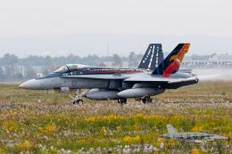 うみBOSEさんが、千歳基地で撮影したオーストラリア空軍 F/A-18A Hornetの航空フォト(写真)
