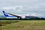 Dojalanaさんが、函館空港で撮影した全日空 787-8 Dreamlinerの航空フォト(写真)