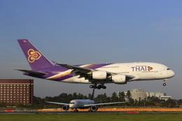 ☆ライダーさんが、成田国際空港で撮影したタイ国際航空 A380-841の航空フォト(写真)
