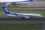 ぐっちーさんが、羽田空港で撮影した全日空 737-881の航空フォト(写真)