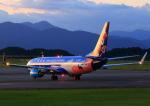 タミーさんが、静岡空港で撮影した中国聯合航空 737-8HXの航空フォト(写真)