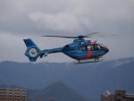 ここはどこ?さんが、札幌飛行場で撮影した北海道警察 EC135P1の航空フォト(写真)