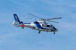 Y-Kenzoさんが、成田国際空港で撮影したオールニッポンヘリコプター AS365N2 Dauphin 2の航空フォト(写真)
