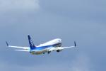 さんたまるたさんが、中部国際空港で撮影した全日空 737-881の航空フォト(写真)