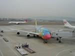 double_licenseさんが、伊丹空港で撮影した全日空 747-481(D)の航空フォト(写真)