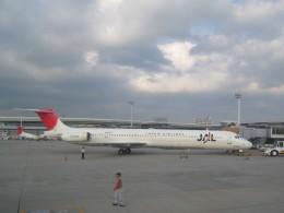 double_licenseさんが、伊丹空港で撮影した日本航空 MD-81 (DC-9-81)の航空フォト(飛行機 写真・画像)