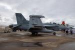 チャッピー・シミズさんが、ミラマー海兵隊航空ステーション で撮影したアメリカ海軍 EA-18G Growlerの航空フォト(飛行機 写真・画像)