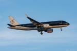 ぱん_くまさんが、羽田空港で撮影したスターフライヤー A320-214の航空フォト(写真)