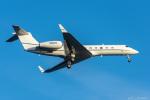 ぱん_くまさんが、羽田空港で撮影した不明 G-Vの航空フォト(写真)