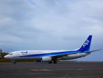 yutopさんが、鳥取空港で撮影した全日空 737-881の航空フォト(写真)