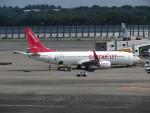 カップメーンさんが、成田国際空港で撮影したイースター航空 737-8Q8の航空フォト(写真)