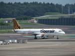 カップメーンさんが、成田国際空港で撮影したタイガーエア台湾 A320-232の航空フォト(飛行機 写真・画像)