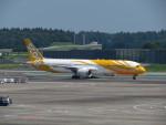 カップメーンさんが、成田国際空港で撮影したスクート 787-9の航空フォト(写真)