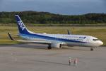 美月推しさんが、能登空港で撮影した全日空 737-881の航空フォト(写真)