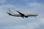 JAXXさんが、厚木飛行場で撮影したアメリカ海軍 P-8A (737-8FV)の航空フォト(写真)