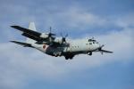 JAXXさんが、厚木飛行場で撮影した海上自衛隊 C-130Rの航空フォト(写真)