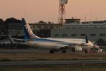 SAMBAR_LOVEさんが、熊本空港で撮影した全日空 737-881の航空フォト(写真)