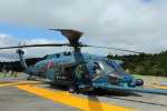 Wasawasa-isaoさんが、笠取山分屯基地で撮影した航空自衛隊 UH-60Jの航空フォト(写真)