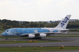 ANA744Foreverさんが、成田国際空港で撮影した全日空 A380-841の航空フォト(写真)
