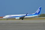 350JMさんが、那覇空港で撮影した全日空 737-881の航空フォト(写真)