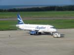 いぶちゃんさんが、新潟空港で撮影したオーロラ 100-95LRの航空フォト(写真)