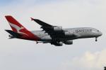 ★azusa★さんが、シンガポール・チャンギ国際空港で撮影したカンタス航空 A380-842の航空フォト(写真)
