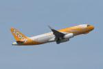 kuro2059さんが、クアラルンプール国際空港で撮影したスクート A320-232の航空フォト(写真)