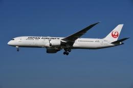 tassさんが、成田国際空港で撮影した日本航空 787-9の航空フォト(写真)