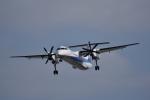 ぬま_FJHさんが、伊丹空港で撮影したANAウイングス DHC-8-402Q Dash 8の航空フォト(飛行機 写真・画像)