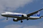 ぬま_FJHさんが、伊丹空港で撮影した全日空 A321-272Nの航空フォト(写真)