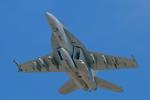 mameshibaさんが、厚木飛行場で撮影したアメリカ海軍 F/A-18F Super Hornetの航空フォト(写真)