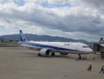 senchouさんが、伊丹空港で撮影した全日空 A321-272Nの航空フォト(写真)