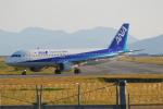ITM58さんが、岩国空港で撮影した全日空 A320-211の航空フォト(写真)