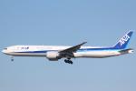 cassiopeiaさんが、成田国際空港で撮影した全日空 777-381/ERの航空フォト(写真)