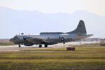 kazuchiyanさんが、岩国空港で撮影したアメリカ海軍 EP-3E Orion (ARIES II)の航空フォト(写真)
