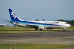 apphgさんが、静岡空港で撮影した全日空 737-8ALの航空フォト(写真)