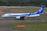 キイロイトリさんが、新千歳空港で撮影した全日空 737-881の航空フォト(写真)